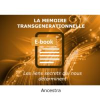 La mémoire transgénérationnelle e-book