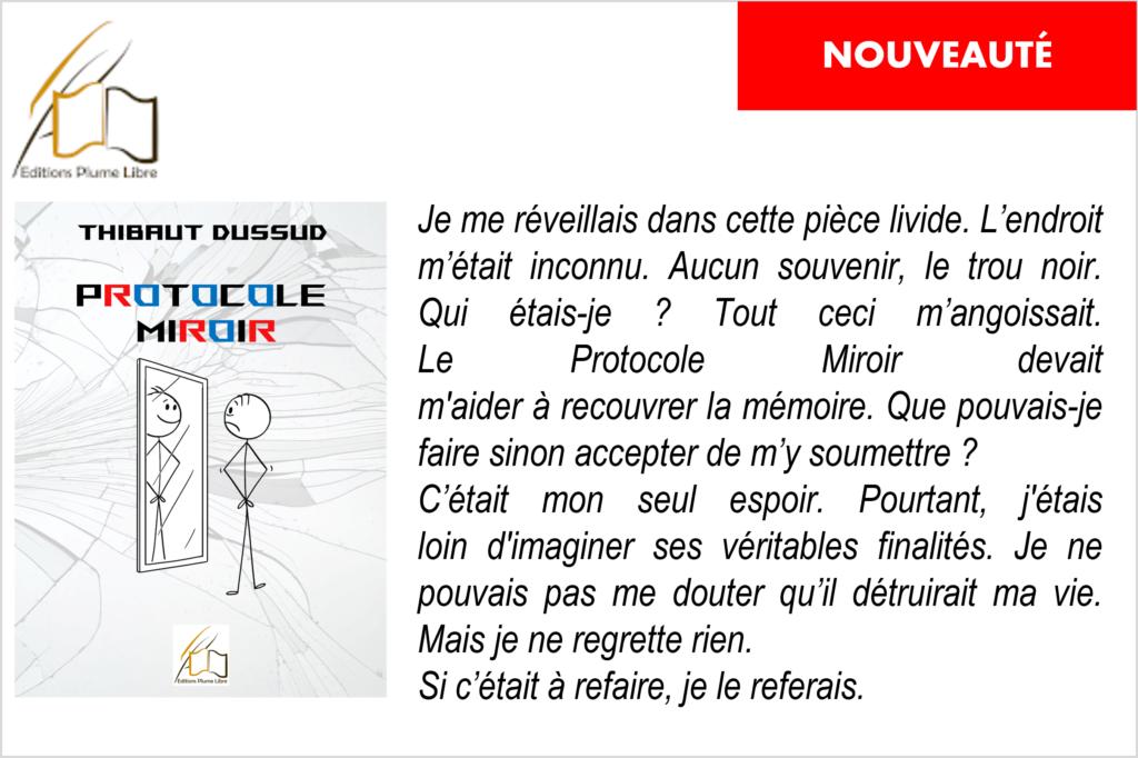 Novella : protocole miroir, par Thibaut Dussud